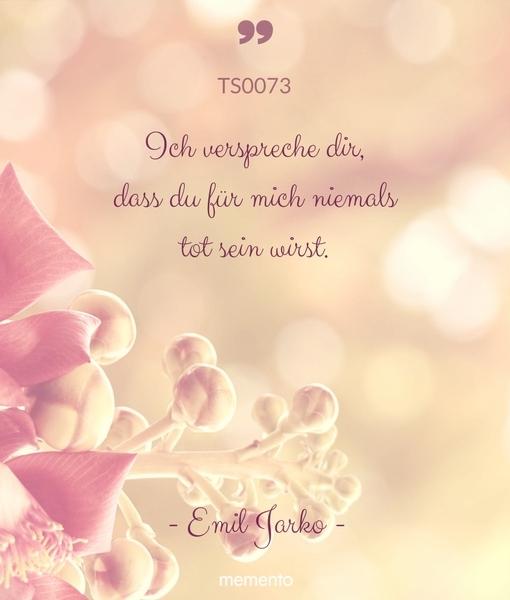 TS0073-ich-verspreche-dir